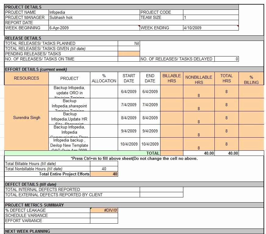 Project Status Template Excel Lovely Weekly Status Report Template Professional Business