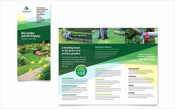 Prospectus Template Word Lovely Brochure Template Word 41 Free Word Documents Download