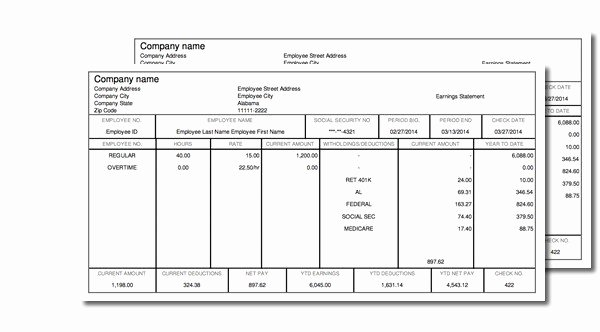 Quickbooks Pay Stub Template Best Of Paycheck Stub Line Free Instant Preview