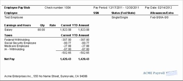 Quickbooks Pay Stub Template New 9 Printable Paycheck Stubs