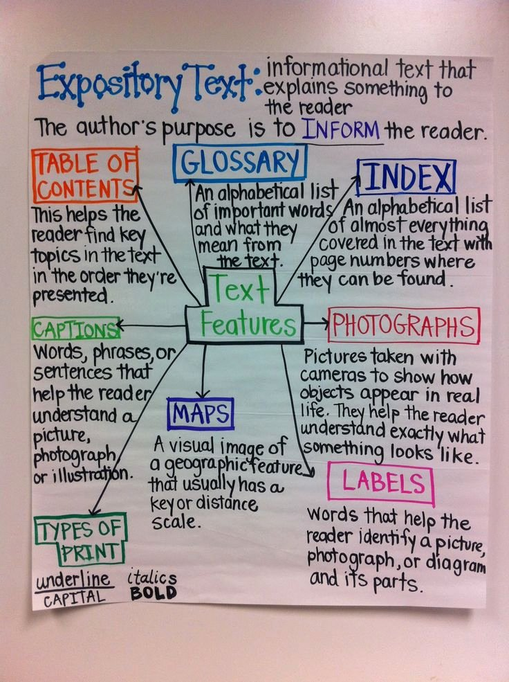 Sample Informational Essay 5th Grade Inspirational Text Features Expository Text Anchor Chart