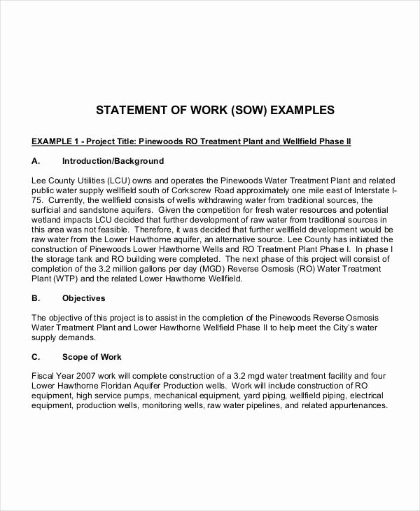 Sample Scopes Of Work Lovely 10 Work Statement Examples Word Pdf
