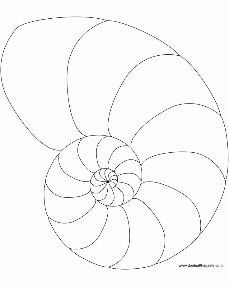 Seashell Template Printable New Free Print Zentangle Patterns