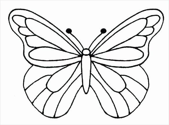 butterflies template to print
