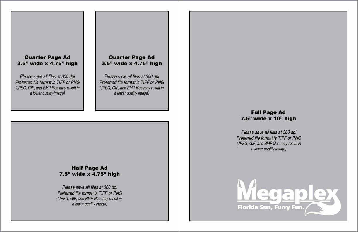 Souvenir Booklet Template Microsoft Word Inspirational 24 Of Congratulations Ad for souvenir Booklet