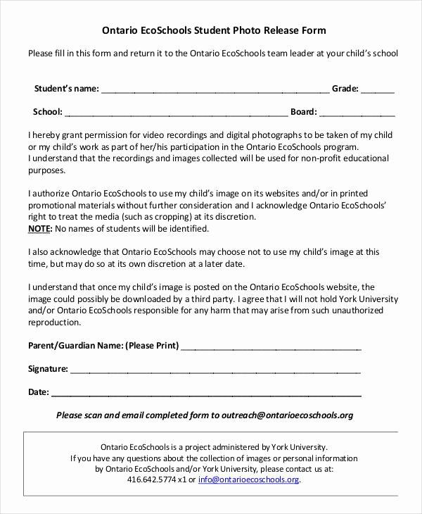 Standard Media Release form Template Elegant Release form Template 9 Free Pdf Documents