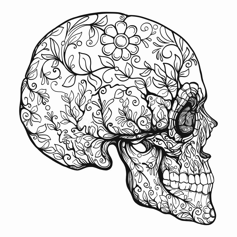 Sugar Skull Outline Awesome Sugar Skull the Traditional Symbol the Day the Dead