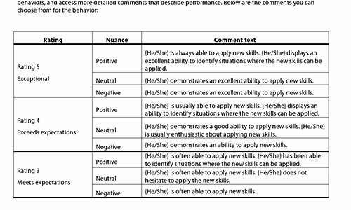 Summary Of Performance Examples Inspirational Sample Performance Review Ments & Appraisal Feedback