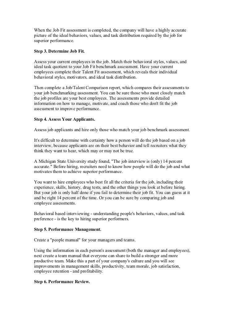 Summary Of Performance Examples New Job Performance Review Examples