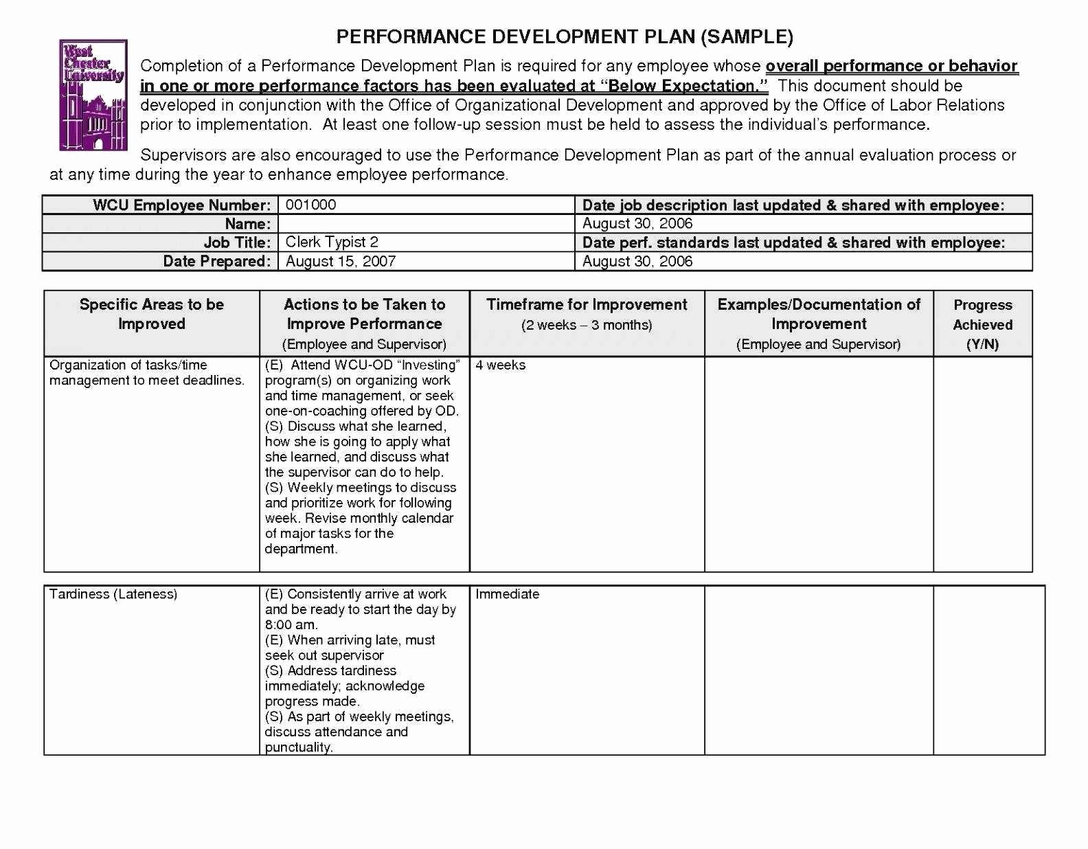 non profit strategic plan template free word pdf 3