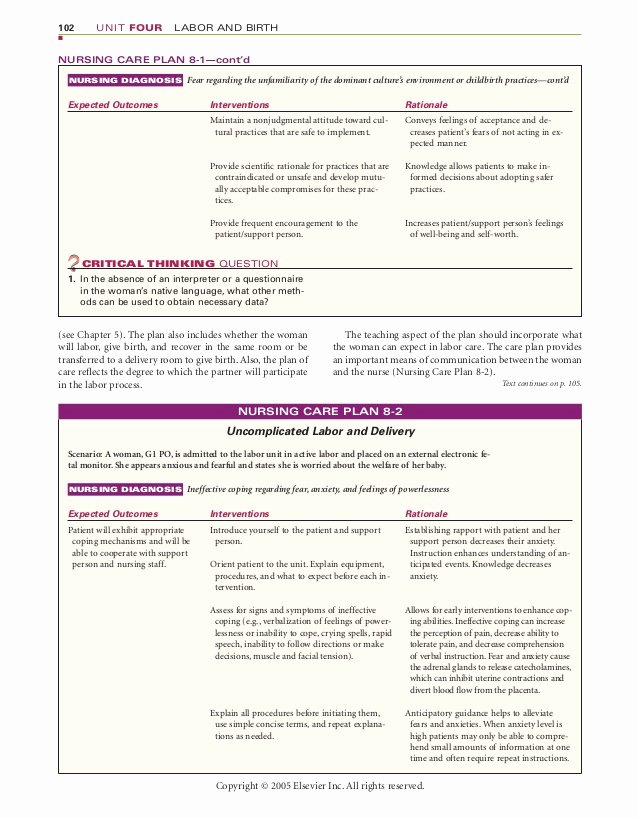 Teaching Plan for Nursing Awesome Chapter 8 Nursing Care During Labor and Pain Management