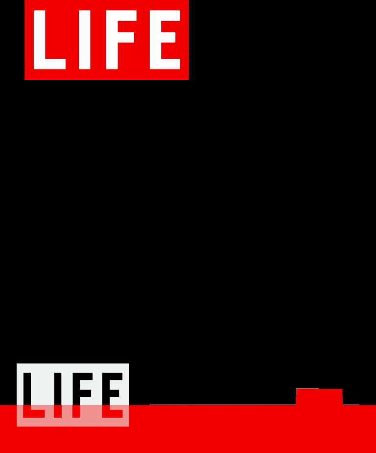 Time Magazine Blank Awesome Life Magazine Cover Dryden Art