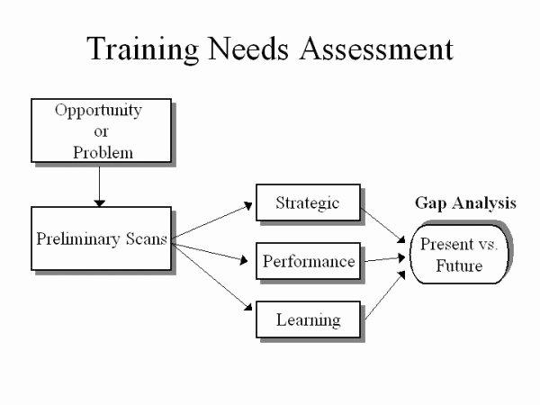 Training Needs Survey Lovely the Landing Needs assessment Artefact & Reflection