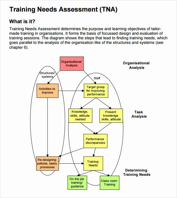 Training Needs Survey Unique 14 Sample Training Needs assessment Templates Pdf Word