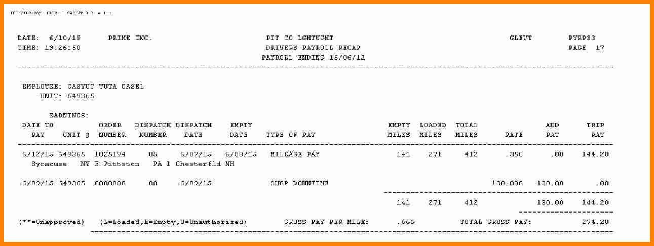 Truck Driver Pay Stub Template Awesome 5 Truck Driver Pay Stub