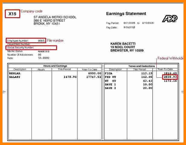 Truck Driver Pay Stub Template Elegant 9 Fake Adp Pay Stubs