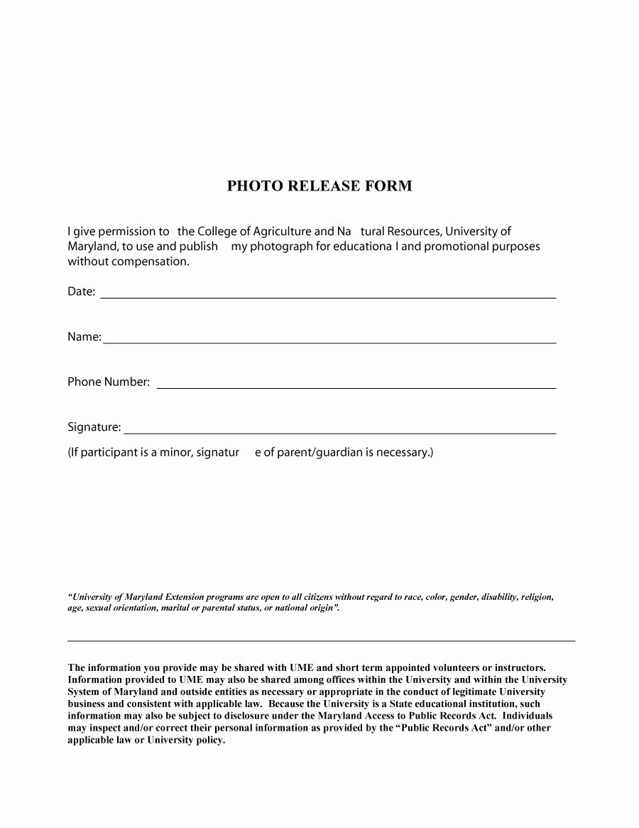 Waiver Template Word Beautiful 53 Free Release form Templates [word Pdf]