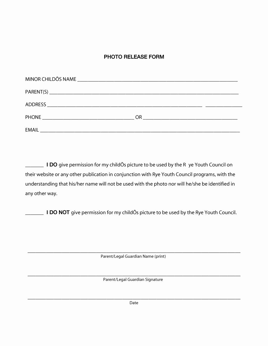 Waiver Template Word Elegant 53 Free Release form Templates [word Pdf]