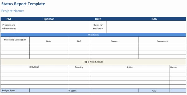 Weekly Project Status Report Template Excel Elegant Status Report Template Projectmanager