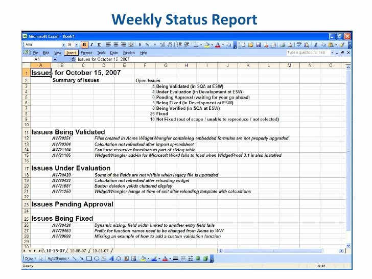 Weekly Project Status Report Template Excel Unique Essential software Inc Weekly Status Report