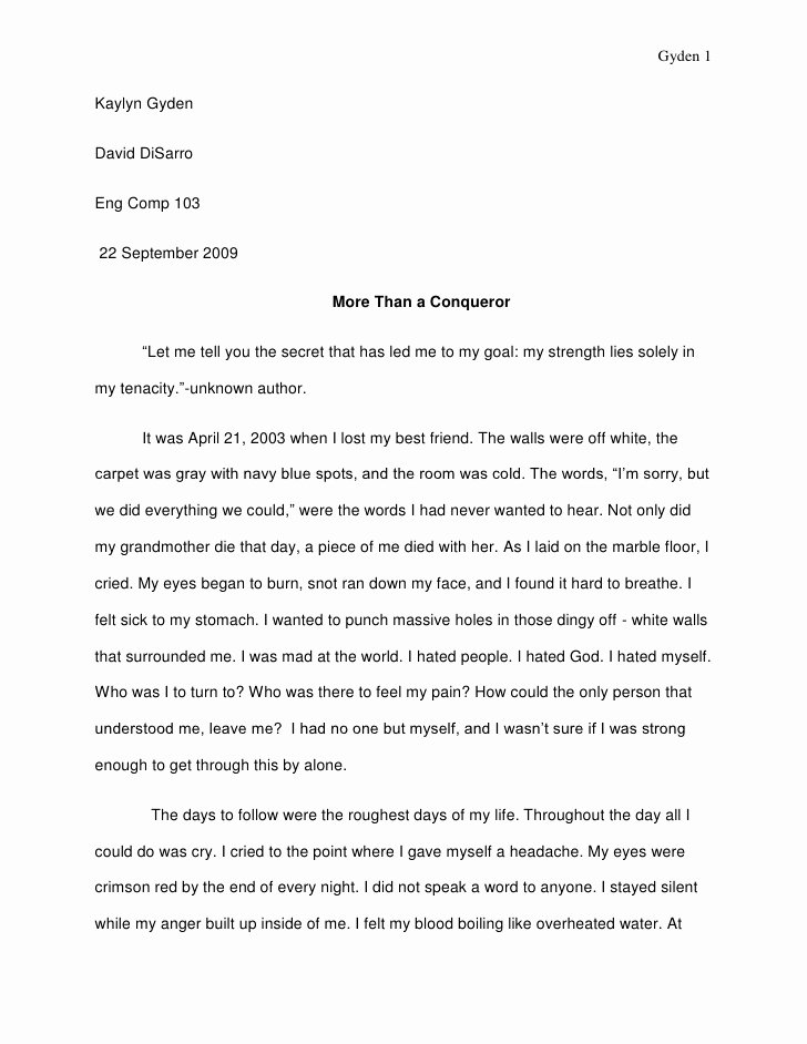 What is A Biographical Essay Inspirational Visual Narrative Essay Revision